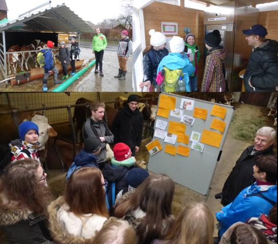 Die Chamer Studierenden informierten die Gymnasiasten direkt im Kuhstall.